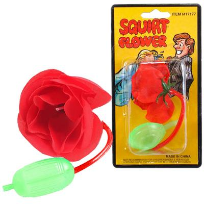 Click to get Squirting Flower Prank