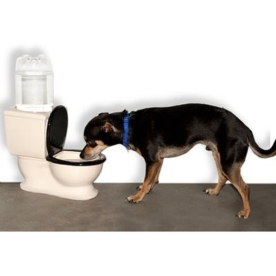 Click to get Toilet Dog Water Bowl